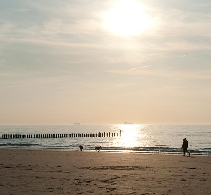 Küstenknüller
